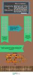 Infographic2.C-Level